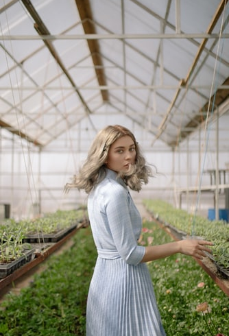 greenhouse dehumidifiers by Ecor Pro
